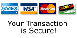 Your Transaction is Secure